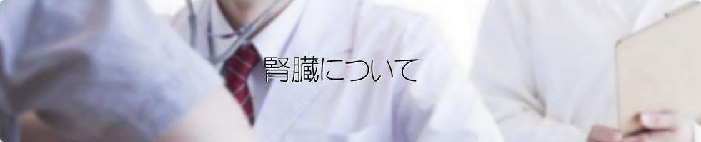 腎臓について